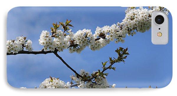 Spring Blossoms 6 Phone Case by Carol Lynch