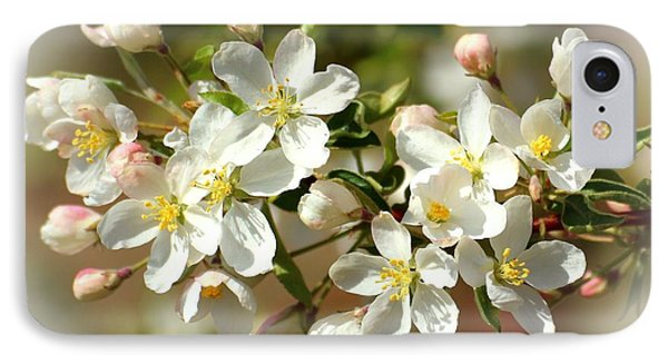 IPhone Case featuring the photograph Spring Blossoms 2 by Lynn Hopwood