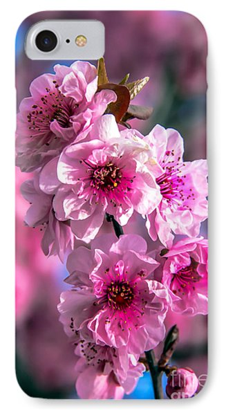 Spring Blossoms IPhone Case by Robert Bales