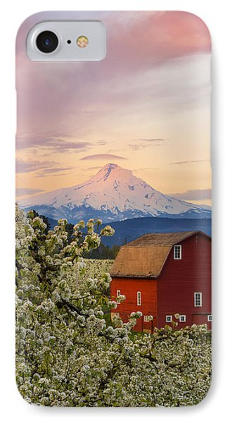 Spring Blossoms Sunrise IPhone Case