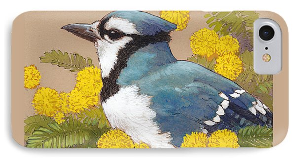 Blue Jay In The Mimosa Tree IPhone Case
