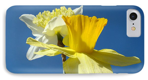 Spring Blue Sky Yellow Daffodil Flowers Art Prints Phone Case by Baslee Troutman