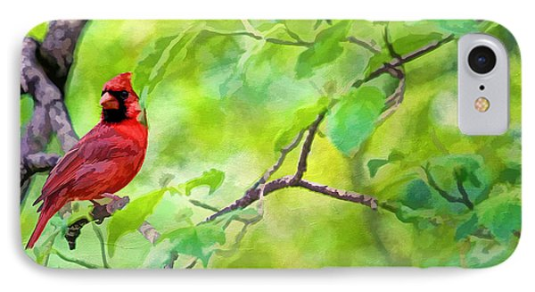 Spring Cardinal Phone Case by Darren Fisher