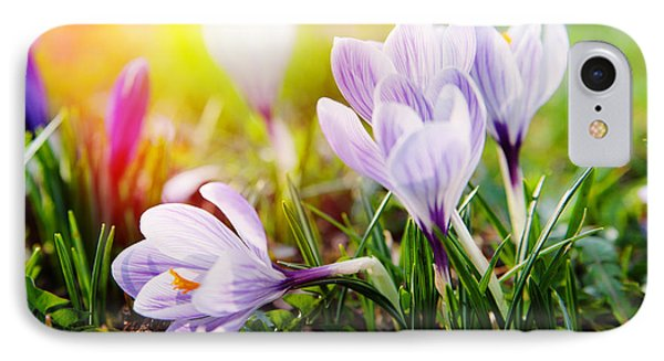 IPhone Case featuring the photograph Spring by Christine Sponchia