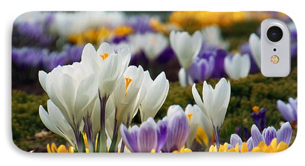 IPhone Case featuring the photograph Spring Crocus by Dianne Cowen
