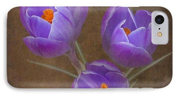Spring Crocus IPhone Case by Angie Vogel