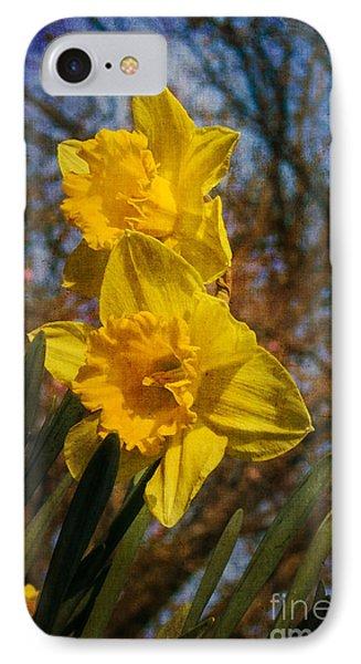Spring Daffodils  Phone Case by Brian Roscorla