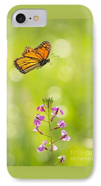 Spring Delight IPhone Case by Alice Cahill