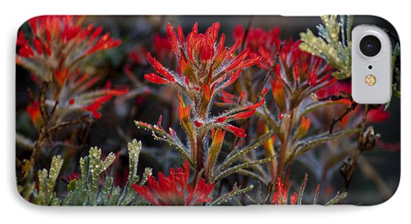 Spring Dew Paintbrush Phone Case by Eric Rundle