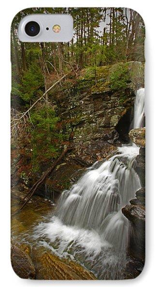 Spring Falls IPhone Case