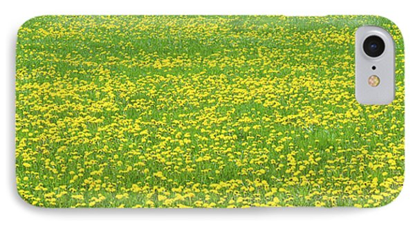Spring Farm Panorama With Dandelion Bloom In Maine Canvas Poster Print IPhone Case by Keith Webber Jr