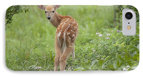 Spring Fawn IPhone Case