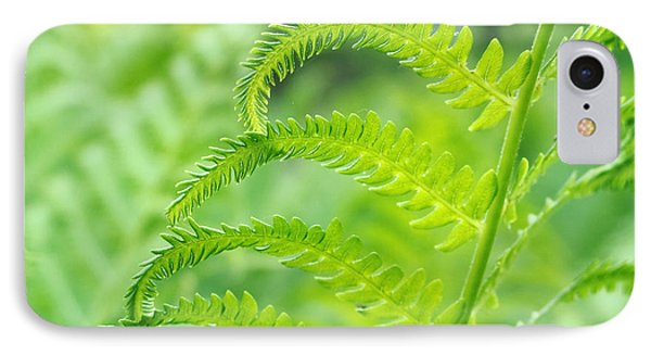 IPhone Case featuring the photograph Spring Fern by Lars Lentz