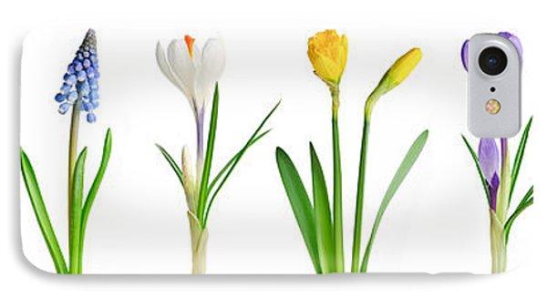 Spring Flowers  Phone Case by Elena Elisseeva
