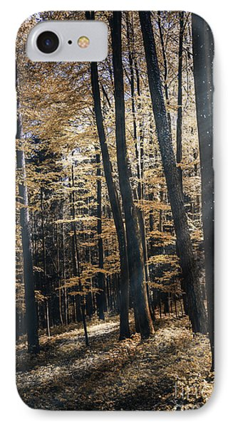 Spring Forest IPhone Case by Bruno Santoro