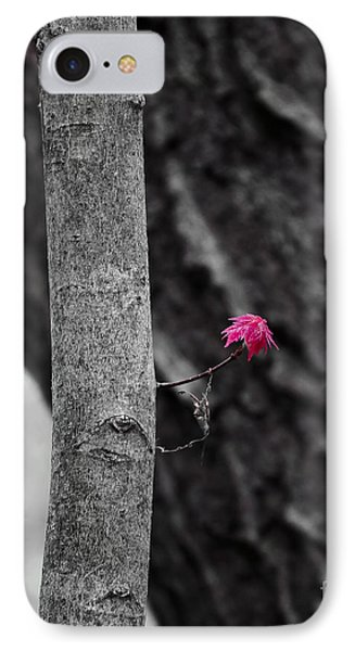 Spring Growth IPhone Case by Steven Ralser