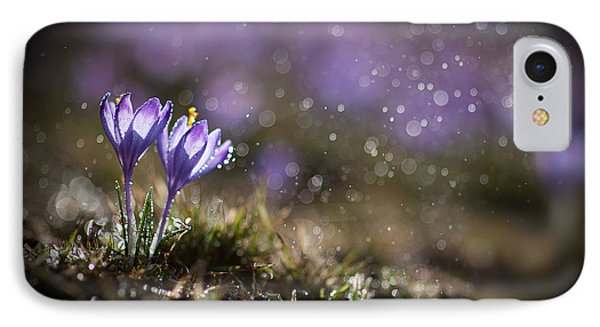 Spring Impression I IPhone Case by Jaroslaw Blaminsky