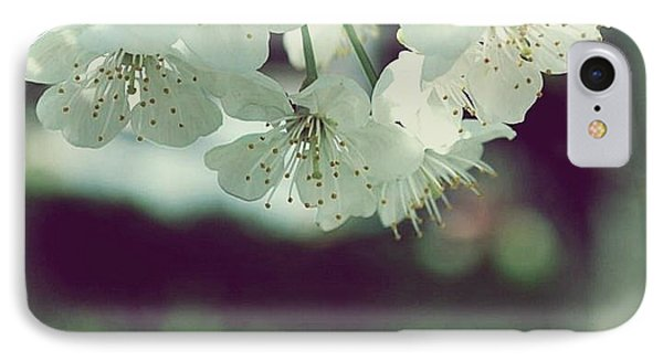 IPhone Case featuring the photograph Spring In My Heart by Marija Djedovic