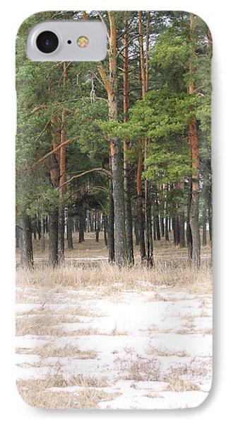 Spring In Pinery Phone Case by Evgeny Pisarev