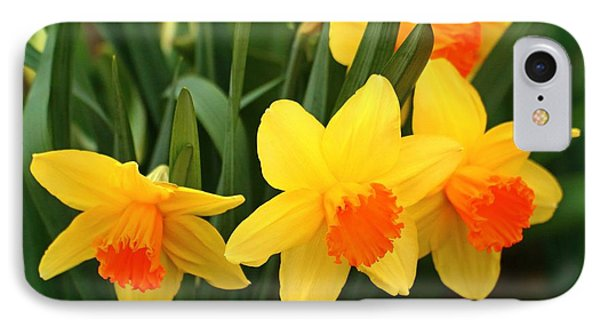 IPhone Case featuring the photograph Spring Is Here by Lynn Hopwood
