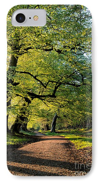 Spring Light  Phone Case by Tim Gainey