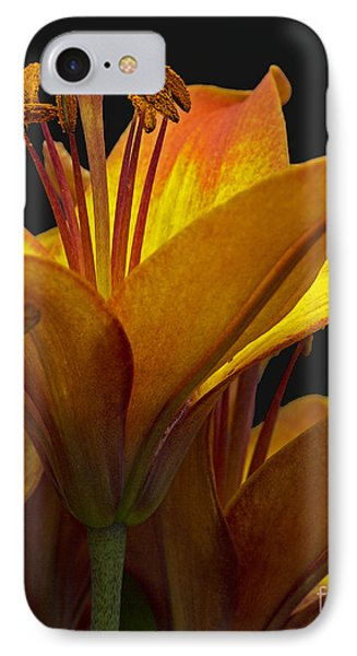 IPhone Case featuring the photograph Spring Lily by Robert Pilkington