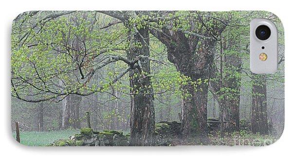 Spring Mist IPhone Case by Alan L Graham
