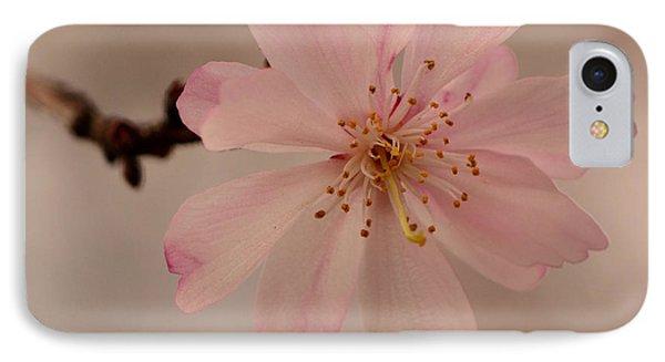 Spring Pink IPhone Case