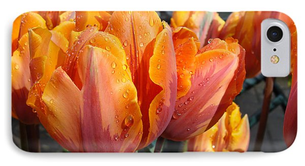 IPhone Case featuring the photograph Spring Shower by Cheryl Hoyle
