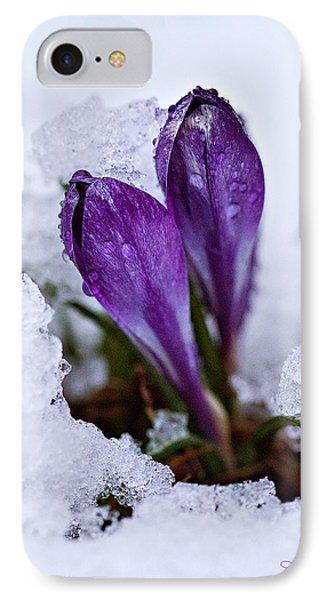 Spring Snow IPhone Case by Joan Davis
