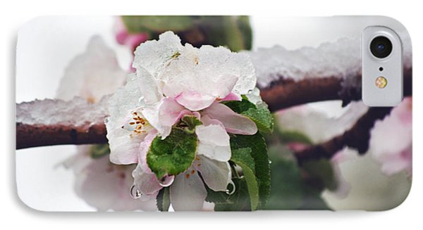 Spring Snow On Apple Blossoms Phone Case by Lisa Knechtel