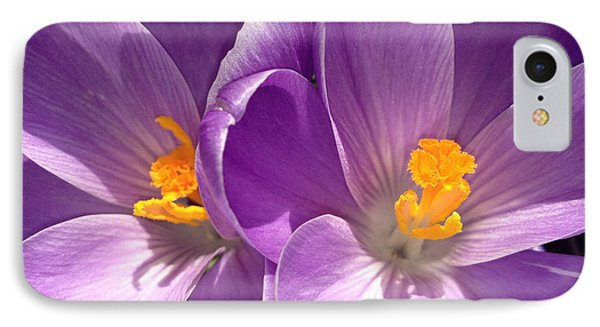 IPhone Case featuring the photograph Spring Sprang by Gwyn Newcombe