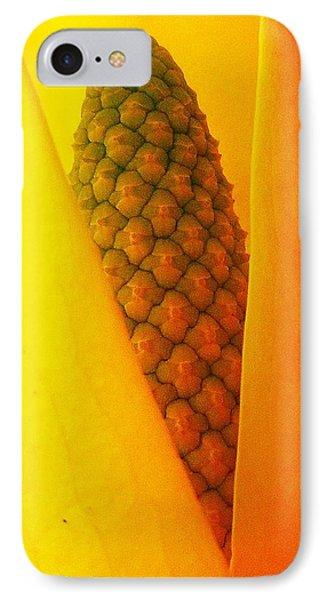IPhone Case featuring the photograph Spring Surprise by Karen Horn
