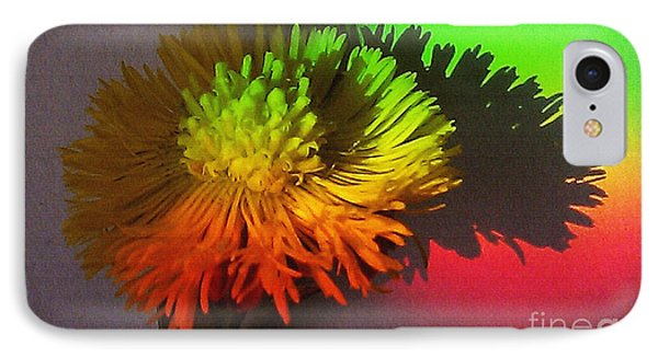 Spring Through A Rainbow IPhone Case by Martin Howard