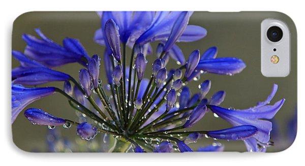 Spring Time Blues IPhone Case by Menachem Ganon
