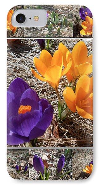 Spring Time Crocuses Phone Case by Patricia Keller