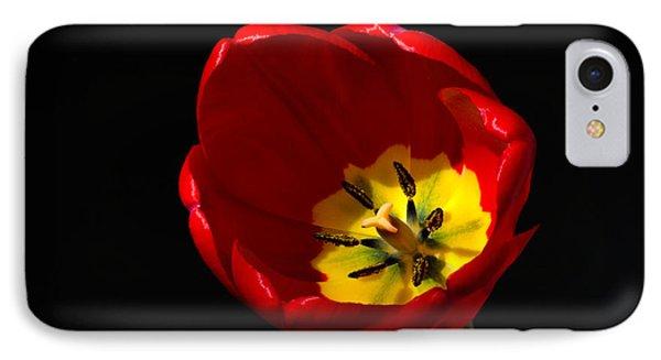 Spring Tulip 2 IPhone Case
