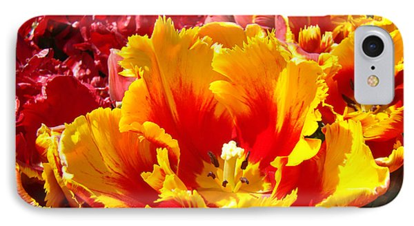 Spring Tulip Flowers Art Prints Yellow Red Tulip Phone Case by Baslee Troutman