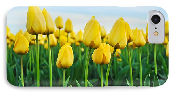 IPhone Case featuring the photograph Spring Tulips by Crystal Hoeveler