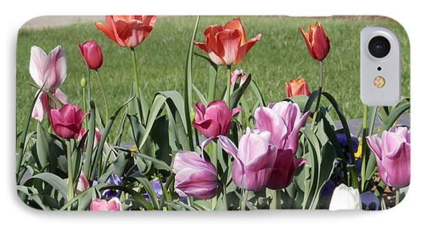 Spring Tulips For My Son IPhone Case by Angelia Hodges Clay