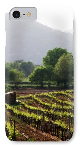 Spring Vines In Provence Phone Case by Lainie Wrightson