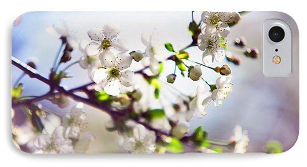 Spring White Cherry Tree  Phone Case by Jenny Rainbow