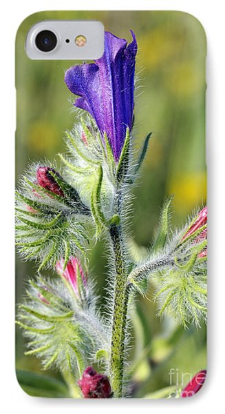 IPhone Case featuring the photograph Spring Wild Flower by George Atsametakis