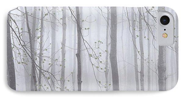 Spring Woodland Fog 1 IPhone Case by Alan L Graham