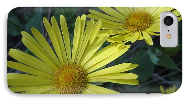 Spring Yellow  IPhone Case by Cheryl Hoyle