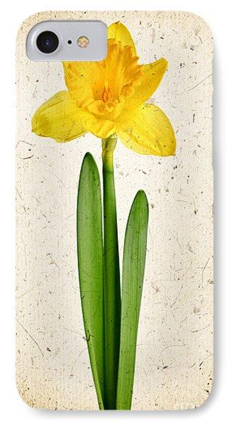 Spring Yellow Daffodil Phone Case by Elena Elisseeva