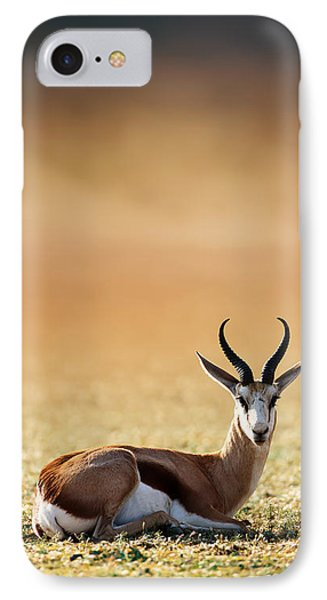 Springbok Resting On Green Desert Grass IPhone Case by Johan Swanepoel