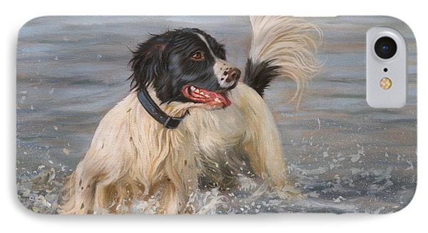Springer Spaniel IPhone Case by David Stribbling