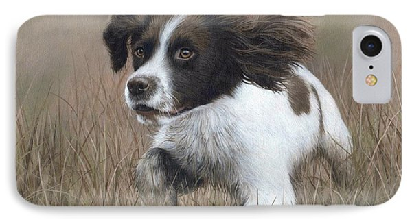 Springer Spaniel Painting IPhone Case