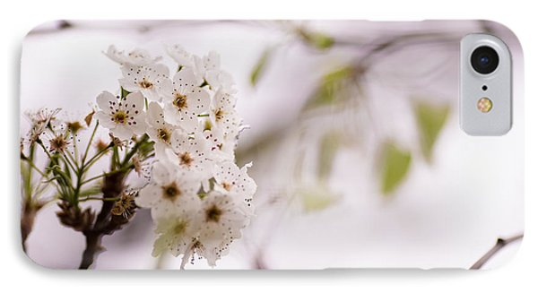 Springs Blossom  Phone Case by Mike Lee